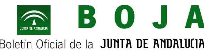 Publicada en BOJA la modificación del Reglamento de Ayudas de Acción Social para Atención a Personas con Discapacidad para el personal de la Junta de Andalucía
