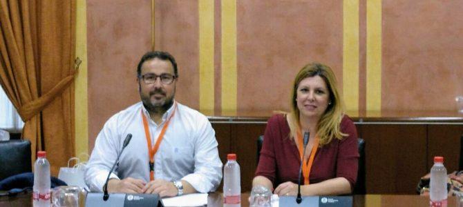 Comparecencia de FEUSO Andalucía ante la Comisión de Educación del Parlamento andaluz sobre la Ley de FP