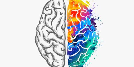 """""""Neuroeducación. Procesos de memoria, habilidades y TIC"""", curso de formación gratuito para los afiliados a FEUSO y homologado por el MEC"""